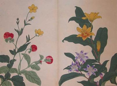 Sakai Hoitsu: Yellow and Purple Cuckoo Flowers - Ronin Gallery