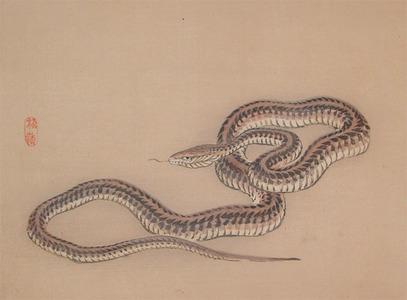 幸野楳嶺: Snake - Ronin Gallery
