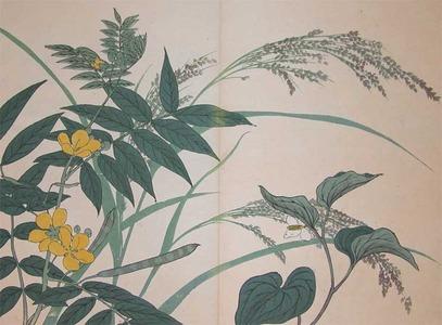 Sakai Hoitsu: Mint and Cassia - Ronin Gallery