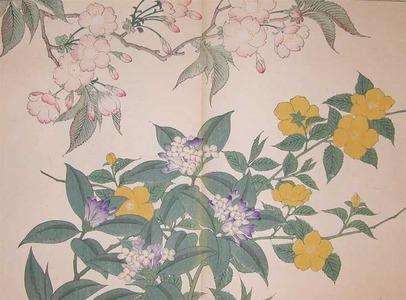 Sakai Hoitsu: Cherry, Japanese Kerria and Winter Daphne - Ronin Gallery
