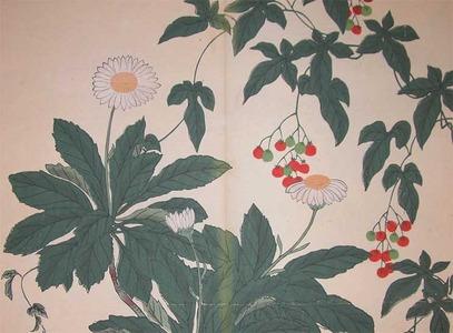 Sakai Hoitsu: Nippon Daisies - Ronin Gallery