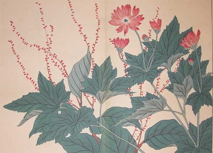Sakai Hoitsu: Jumpseed Plants and Mums - Ronin Gallery