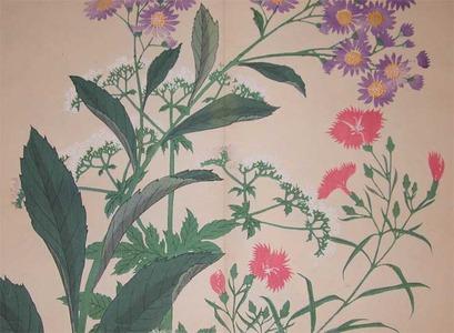 Sakai Hoitsu: Tartarian Aster and Large Pinks - Ronin Gallery