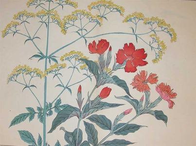 Sakai Hoitsu: Yellow Patriniaand Lychnis Senno - Ronin Gallery