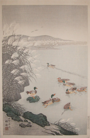 Shoson: Mallards in Autumn - Ronin Gallery