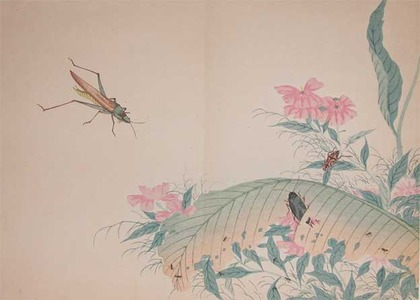 Watanabe Shotei: Cone-headed Grasshopper, beatles and ants. - Ronin Gallery