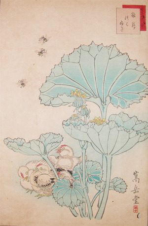 Sugakudo: Chicks, Bees and Tsuwabuki - Ronin Gallery