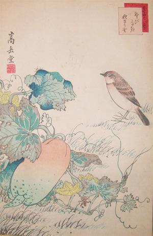 Sugakudo: Nobitaki Bird and Cucumber - Ronin Gallery
