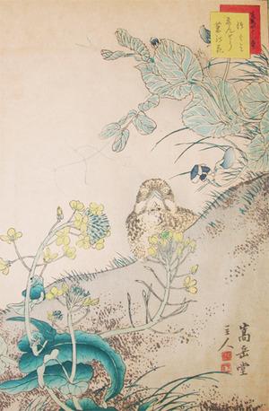 Sugakudo: Dusky Thrush and Pea flower - Ronin Gallery