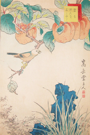 Sugakudo: Hekicho Bird and Apricots - Ronin Gallery