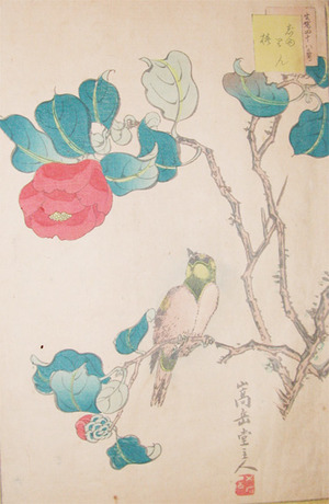 Sugakudo: Jurin and Camelia - Ronin Gallery