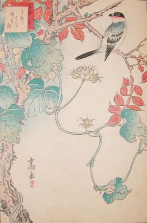 Sugakudo: Uso and Morning Glory - Ronin Gallery