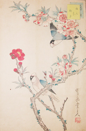 Sugakudo: Buncho and Red Plum blossoms - Ronin Gallery
