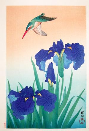 Shoson: Kingfisher and Iris - Ronin Gallery