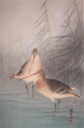 Shoson: Reeds and Snipe - Ronin Gallery