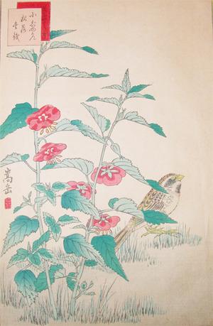 Sugakudo: Bunting - Ronin Gallery