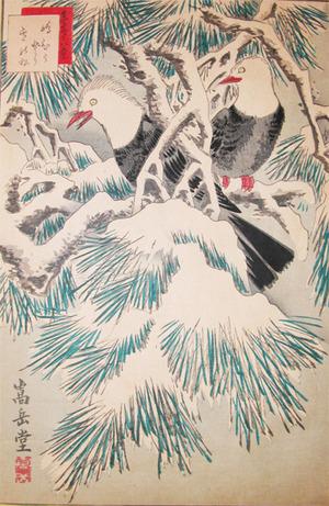 Sugakudo: Shima-hiyodori and Snow covered Pine - Ronin Gallery