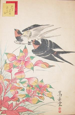 Sugakudo: Returning Swallows - Ronin Gallery