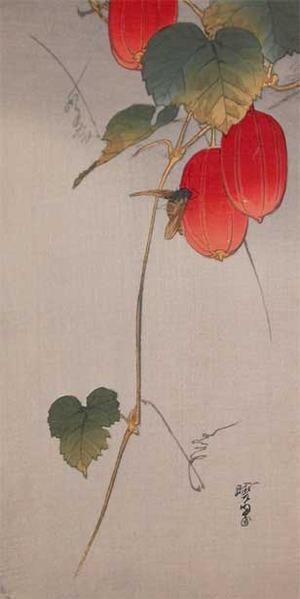 河鍋暁翠: Robber Fly on Snake Gourd - Ronin Gallery