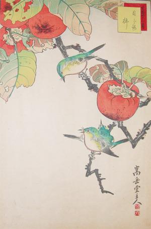 Sugakudo: White-eye Birds and Persimmons - Ronin Gallery