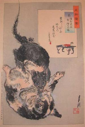 Gekko: The Rat and the Cat of Kuroishi - Ronin Gallery