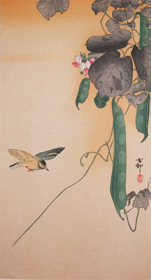 Koson: Hummingbird and Green Beans - Ronin Gallery