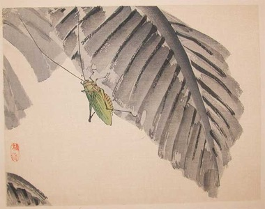幸野楳嶺: Katydid on Banana Leaf - Ronin Gallery