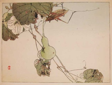 Watanabe Shotei: Locust and a Gourd - Ronin Gallery