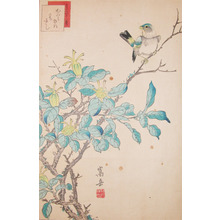 Sugakudo: Siskin and Gardenia - Ronin Gallery