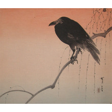 Seitei: Crow on Branch - Ronin Gallery