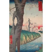 Utagawa Hiroshige: Cherry Blossoms at Koganei - Ronin Gallery
