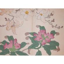 酒井抱一: Michelia and Rhododendron - Ronin Gallery