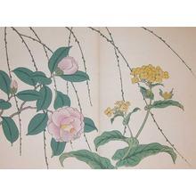 酒井抱一: Nanohana, Camellia and Weeping Willow - Ronin Gallery