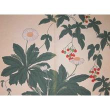 酒井抱一: Nippon Daisies - Ronin Gallery