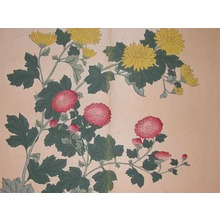 Sakai Hoitsu: Yellow and Red Chrysanthemums - Ronin Gallery
