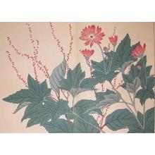 酒井抱一: Jumpseed Plants and Mums - Ronin Gallery