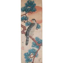 歌川広重: Hawk on a Pine Branch at Sunrise - Ronin Gallery
