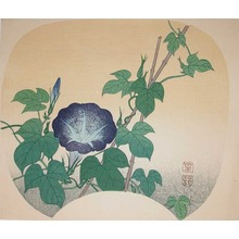 Shoson: Morning Glory - Ronin Gallery