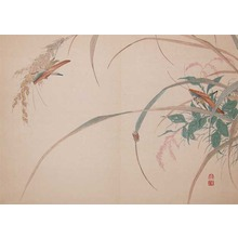 Watanabe Shotei: Cone Headed Grass Hoppers and a Gold Beatle - Ronin Gallery