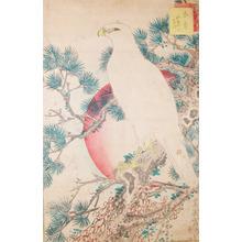 Sugakudo: Hawk and White Pine - Ronin Gallery