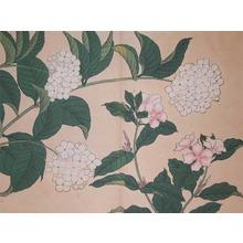 酒井抱一: Periwinkle and Hydrangea - Ronin Gallery