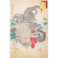 Sugakudo: Roosters and Snake-Berry - Ronin Gallery