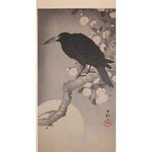Koson: Jungle Crow on a Cherry Branch on a Moonlit Night - Ronin Gallery