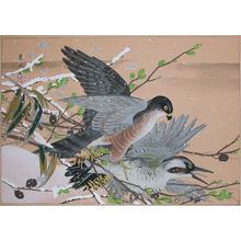 Rakuzan: Hawk Attacking a Woodpecker - Ronin Gallery