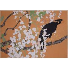 Rakuzan: Japanese Black Myna and Wisteria - Ronin Gallery