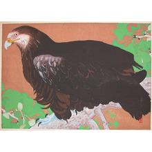 Rakuzan: Mid Summer: Giant Eagle on Gingko Tree - Ronin Gallery