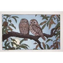 Yoshida Toshi: Two Owls - Ronin Gallery