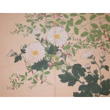 酒井抱一: White Mums and Bush Clover, - Ronin Gallery