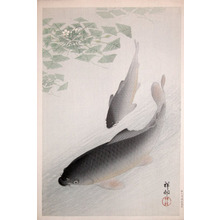 Shoson: Two Carp - Ronin Gallery