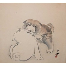 Iijima Koga: Puppies - Ronin Gallery